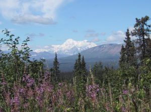 Mount McKinley or Denali (as you may prefer) Symbol of the power of truth.