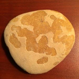 An ordinary rock.